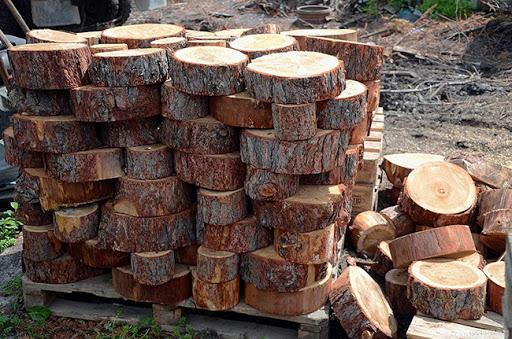 Дорожка из спилов дерева своими руками: как сделать