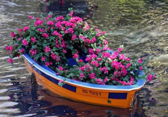 Что такое клумба, виды цветников в ландшафтном дизайне с названиями