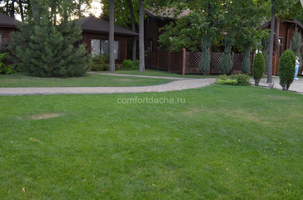 Как выровнять участок на даче своими руками под газон