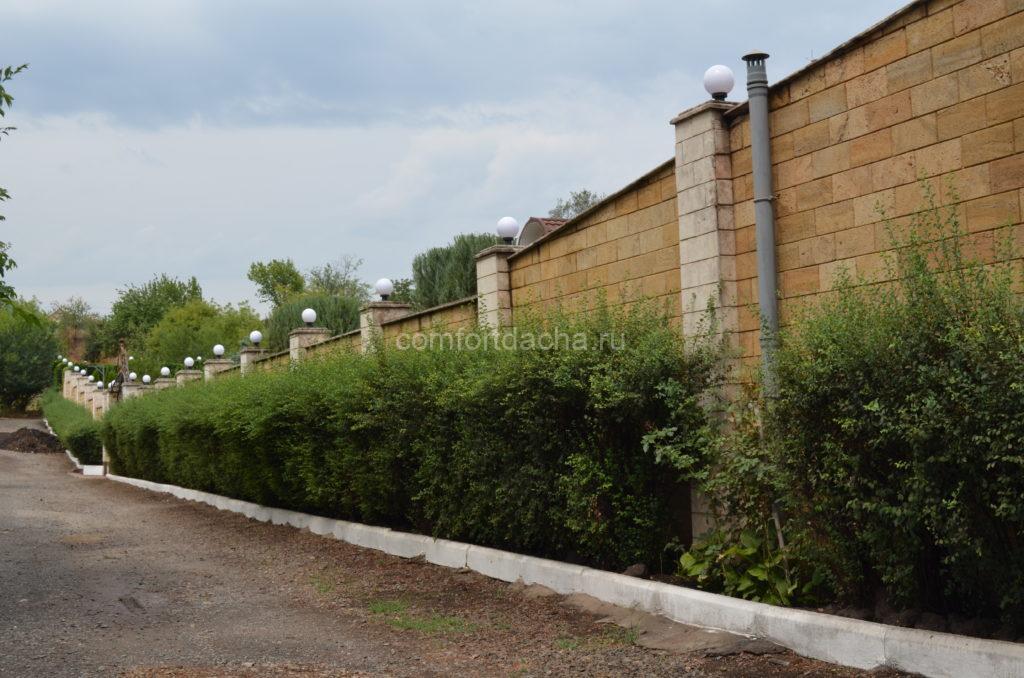 Клумба вдоль забора на даче своими руками: правила оформления