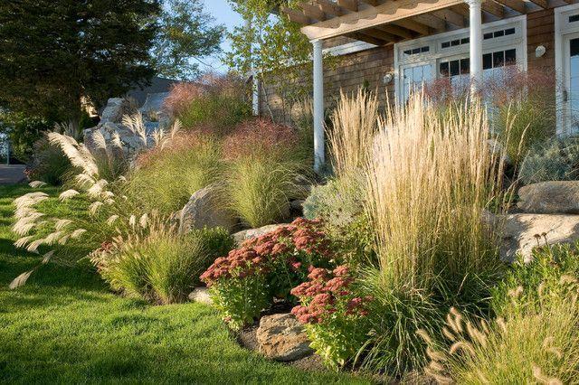 Как используются злаки в ландшафтном дизайне сада — идеи