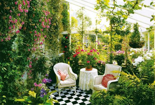 Вьющиеся цветы для сада — названия и описания, как правильно выбрать