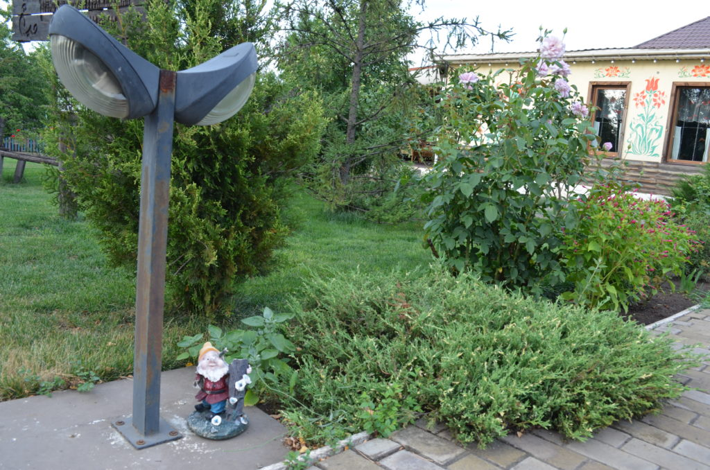Можжевельник в ландшафтном дизайне сада — идеи оформления