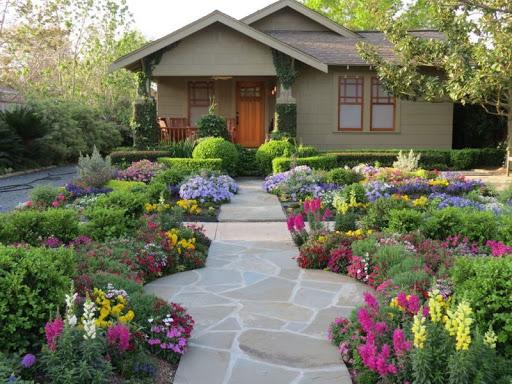 Летние цветы для сада — как выбрать растения, чтобы они цвели все лето