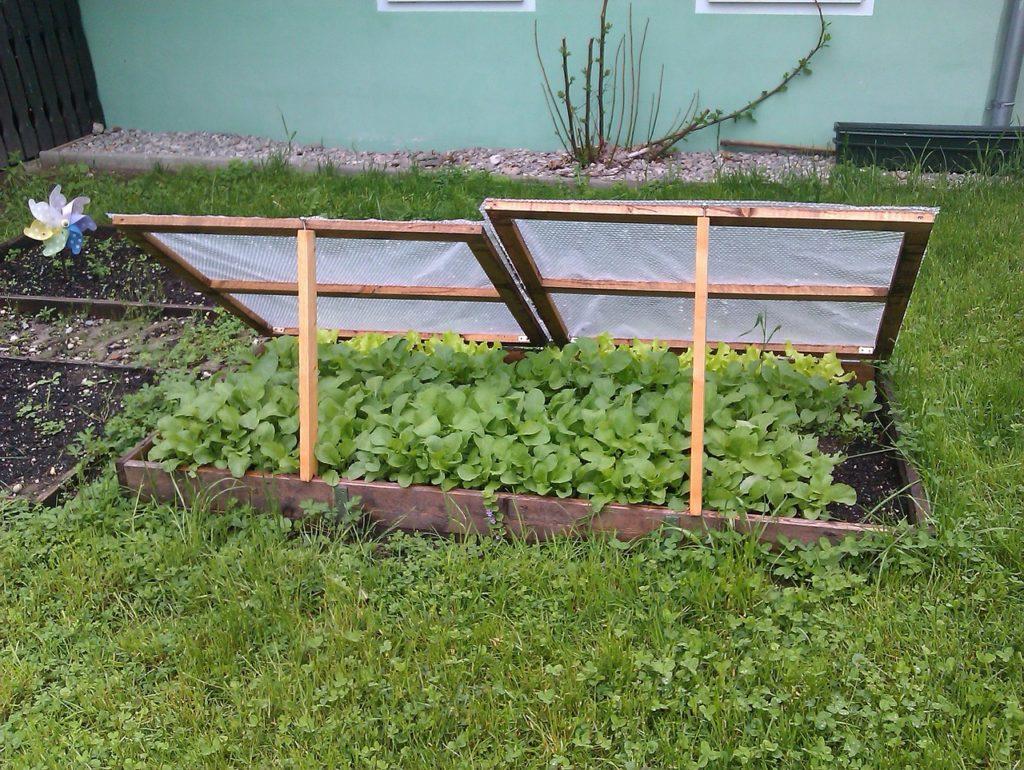 Деревянные грядки для огорода своими руками