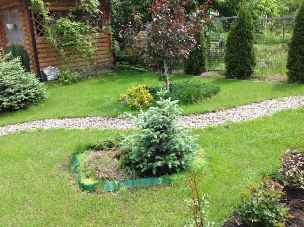 Как произвести озеленение участка у загородного дома своими руками