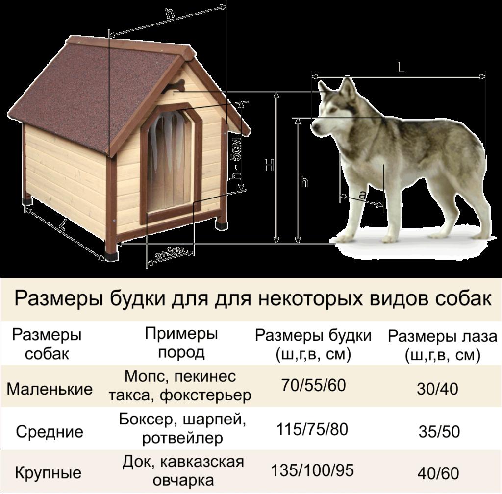 Вольер для собаки своими руками — чертежи с размерами