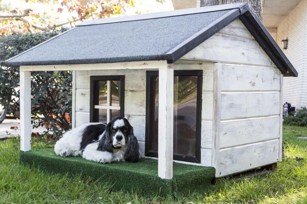 Утепленная будка для собаки своими руками — чертежи с размерами