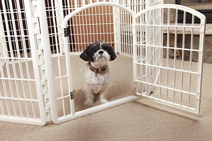 Сетка для вольера собаки — разновидности и критерии выбора
