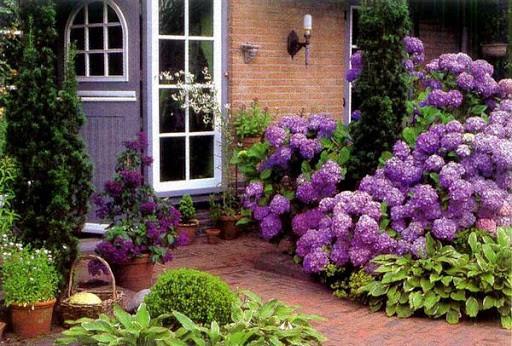 Как оформить палисадник перед домом своими руками — идеи дизайна