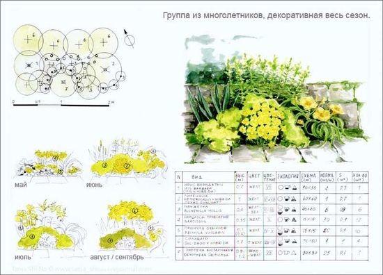 Схема клумбы — особенности планирования цветника для дачного участка