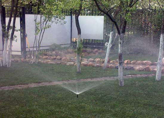 Система полива и орошения огорода своими руками