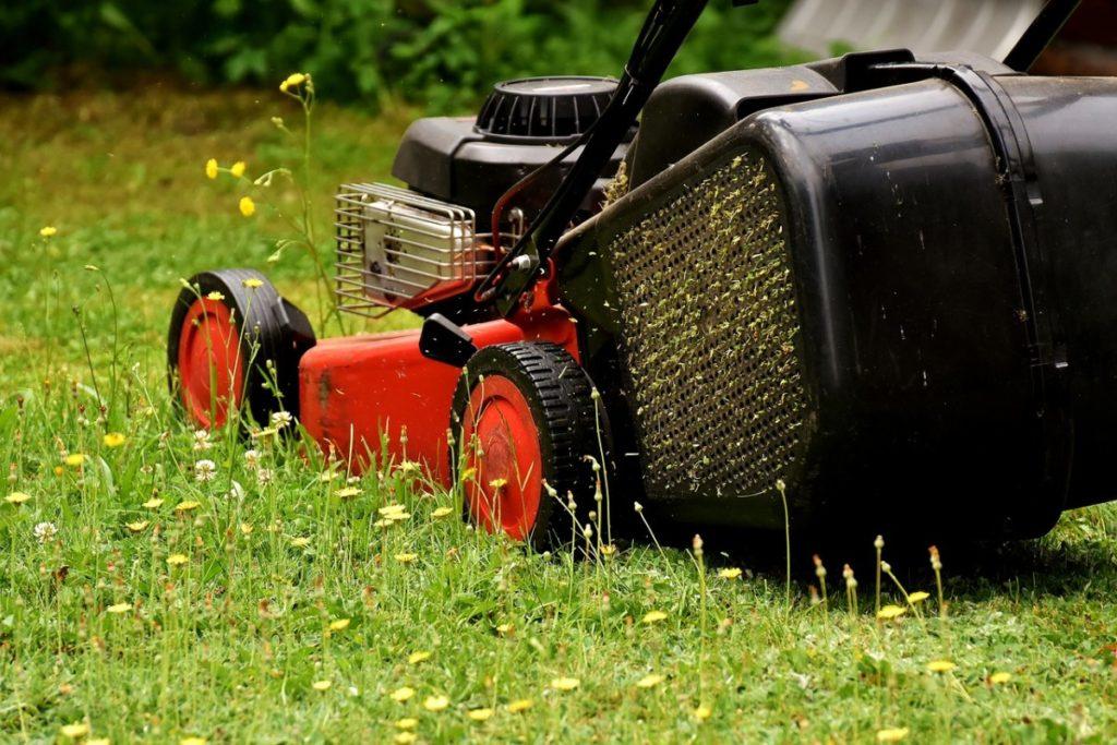 Как правильно выбрать газонокосилку для дачи