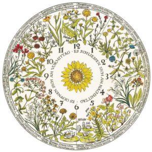 Цветочные часы на участке загородного дома