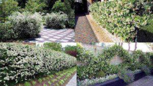 Как использовать кустарники в ландшафтном дизайне дачи