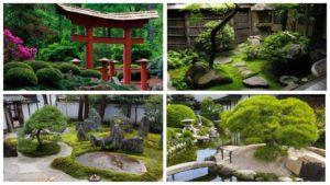 Как сделать японский сад на даче своими руками — подробное руководство