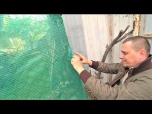 Фасадная сетка для забора на даче —особенности и разновидности